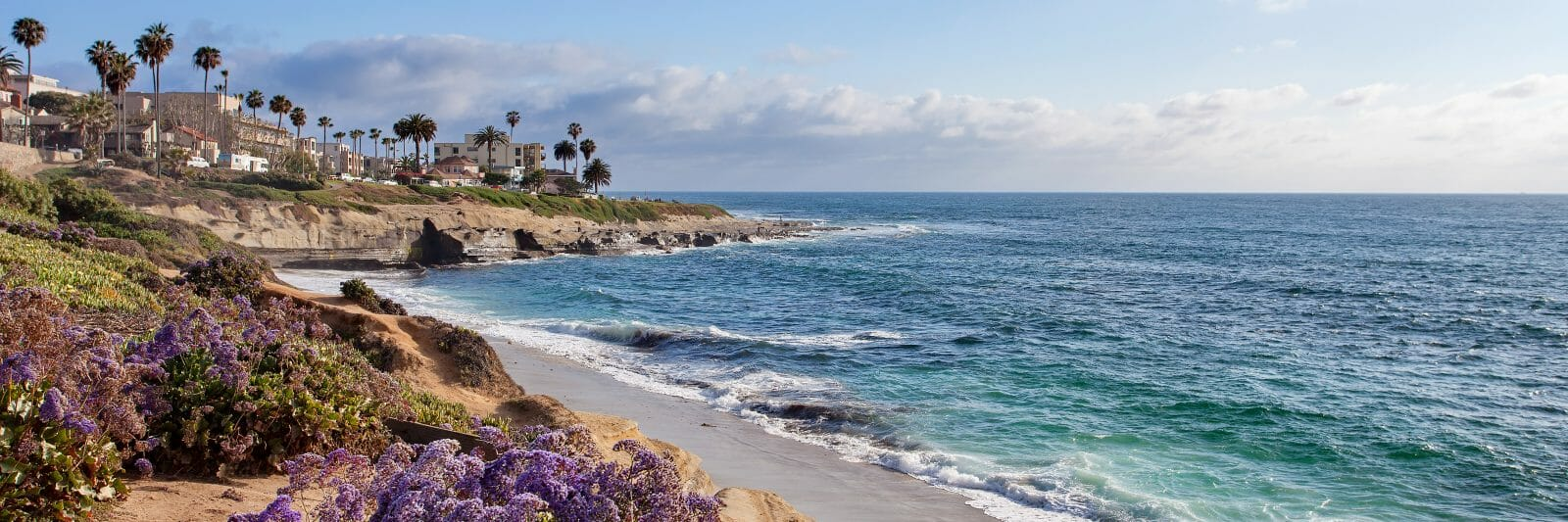 La Jolla Shore with ocean on a sunny day