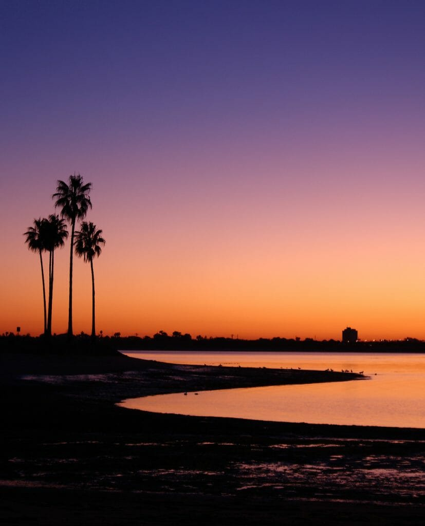 Palm Trees Mission Bay San Diego California USA, Twilight Sunset