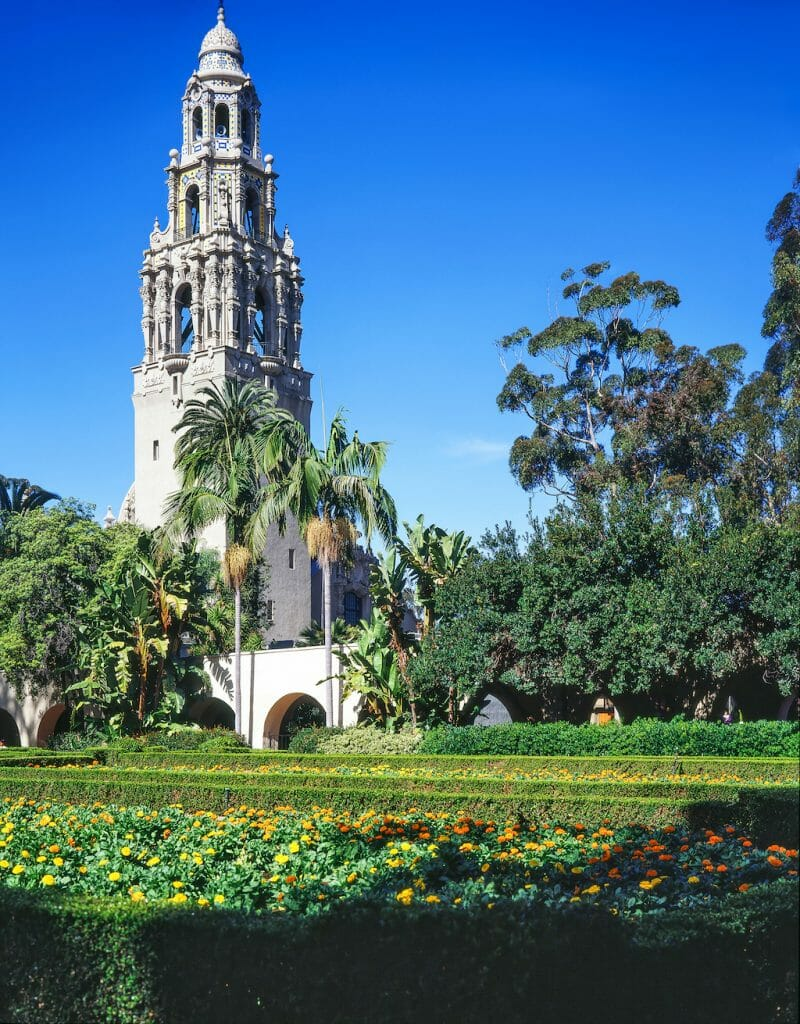 California tower towering over the pond and foliage of Balboa Park