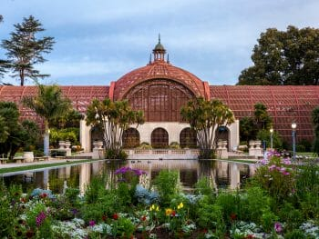 Arboretum expanding over the frame with foliage all around and a pond in front of it in Balboa Park, San Diego