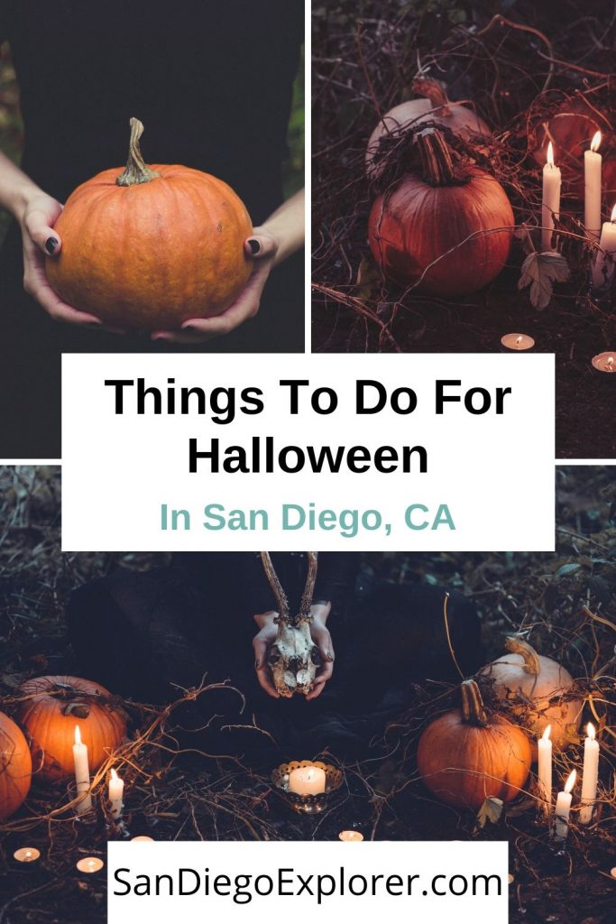 Read this to discover all of the amazing things to do on Halloween San Diego has to offer. Whether you want to be scared, intrigued, or relaxed, there's a spooky activity for everyone in San Diego on Halloween! San Diego Halloween - Halloween in San Diego - Things to do in San Diego Halloween - San Diego in October #sandiegoexplorer #halloweensandiego #SoCal #HalloweenSanDiego  #sandiego #sandiegocalifornia #sandiegoca #halloween #october #fallinsandiego #sandiegotrip #sandiegothingstodo
