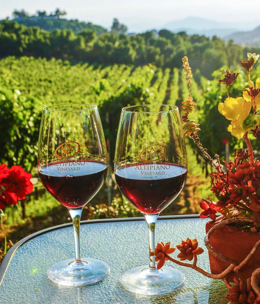 two wine glasses on table in front of green vineyards - San Aiego wineries