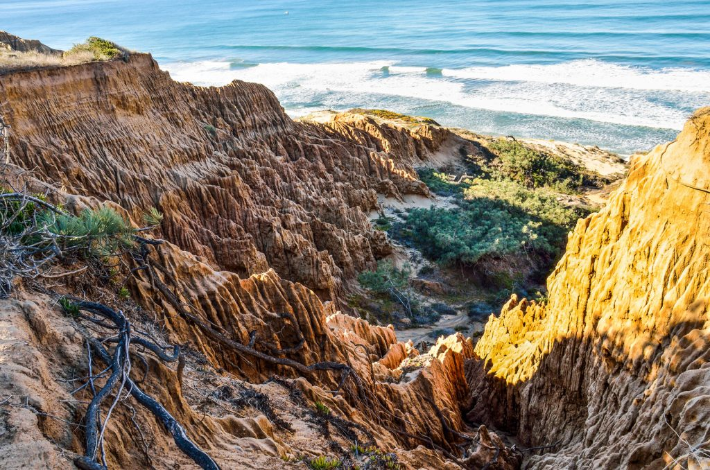 San Diego Winter Hikes: Closeup pattern of torrey pine eroded sandstone cliffs on coast in La Jolla by San Diego
