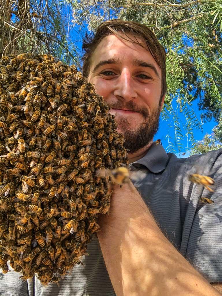 Beekeeper holding bee hive at  Mariott Marquis Marina