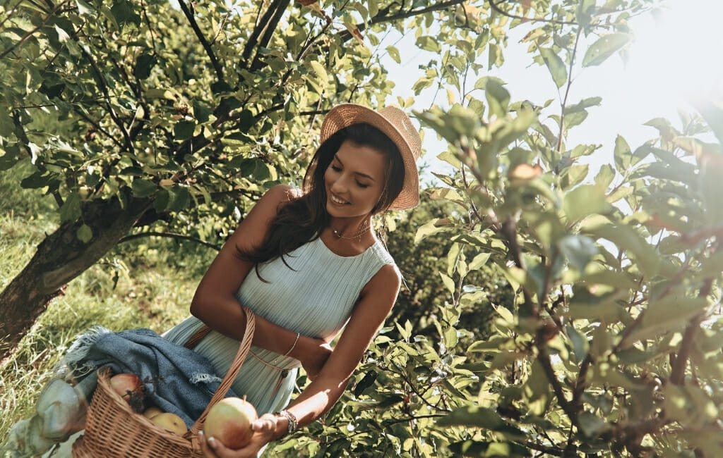 Woman with long dark hair and a tan hat standing in an apple orchard in San Diego holding a basket with apples - Julian Apple Picking