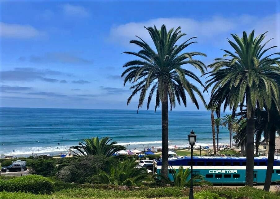 View of Del Mar Beach with Palm Trees and the Amtrak Coaster Train in the foreground