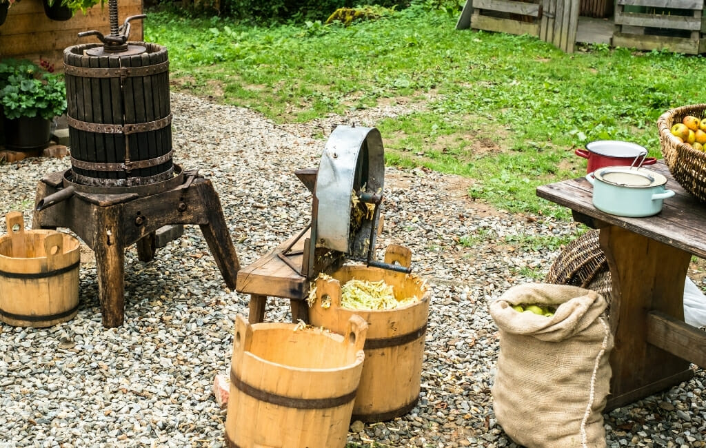 tools for apple cider pressing, including press, buckets, barrels, apples and more
