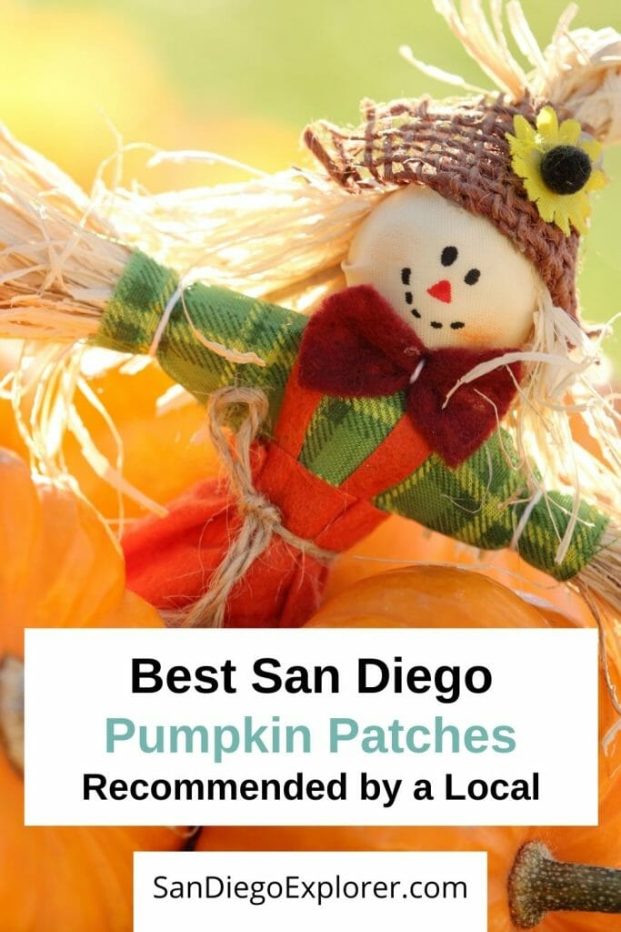 Ready for fall? Here are the best San Diego Pumpkin Patches that will put you in the fall spirit. Take a look at these fun pumpkin farms in San Diego county and all the fun activities they offer. From hayrides to pumpkin carving, corn mazes and apple cannons, a trip to a pumpkin patch in San Diego is fun for the whole family. San Diego with kids - San Diego pumpkin patch - San Diego fall activities - San Diego October - San Diego Things to do - San Diego itinerary - San Diego travel tips