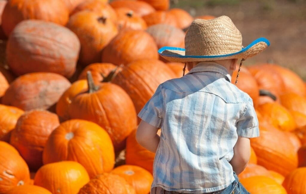 little boy with cowboy hat in front of a mountain of pumpkins