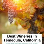 10 amazing Temecula Wineries you MUST visit if you are a Wine Lover - Temecula Wine Tasting - Best Wineries in Temecula, California - Temecula Wineries - Things to do in Temecula - Wine Tasting Southern California - Best Wineries California - Visit California - Southern California Road Trip - San Diego Wine Tasting - San Diego Things To Do - San Diego Wine Tours - San Diego Wine Tasting Tours - Temecula Wine Tasting Tours