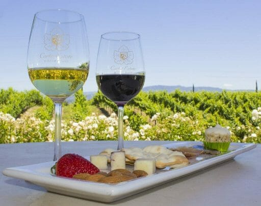 plate with cheese and meats on table with two glasses of wine - Temecula vineyards in the background