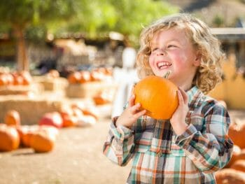 Little blond by holding pumpkin in the front with pumpkin patch in the background