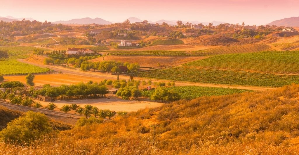 Landscape photo of Temecula valley with vineyards and wineries - photo has an orange tinge and light pink sky.