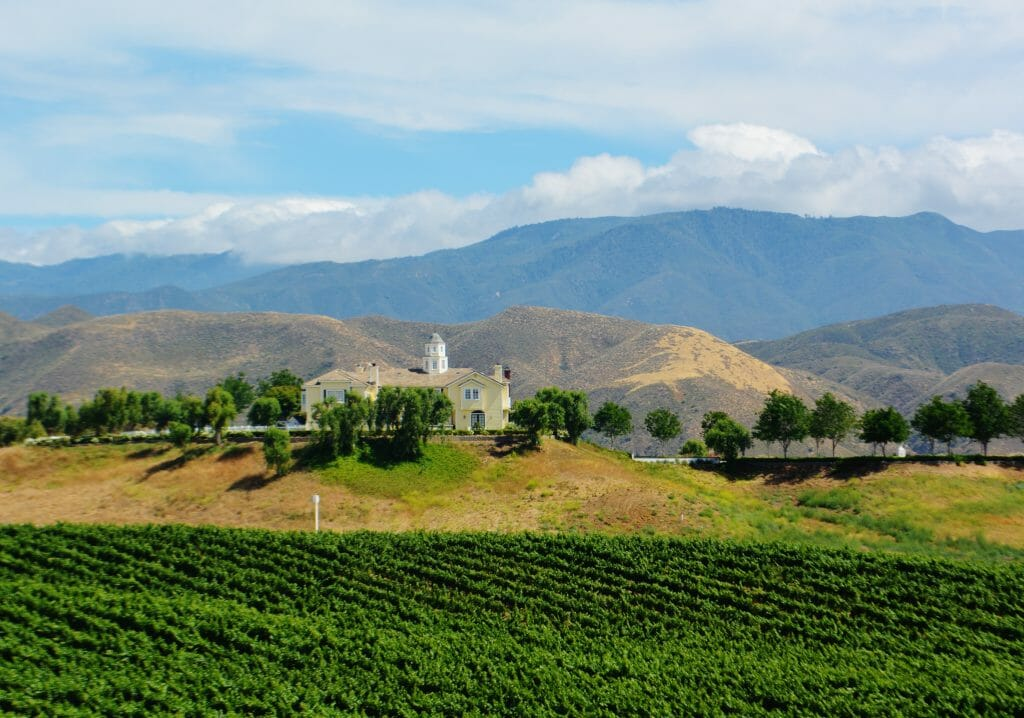 Landscape shot of Temecula Valley with vineyards in front and hilly countryside in the back