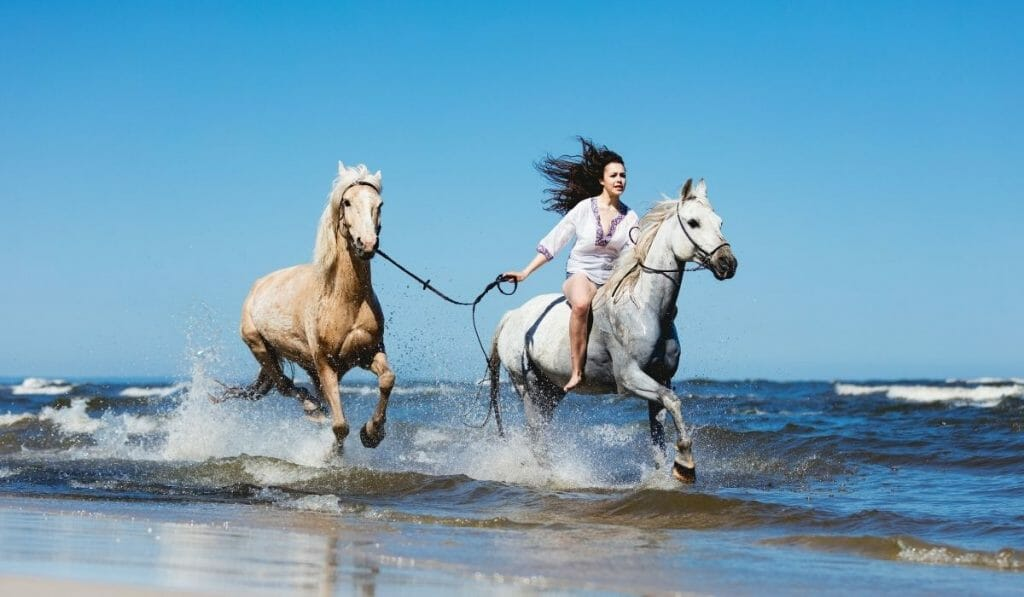 woman riding a white horse on the beach, while leading a tan horse behind her on a sunny day