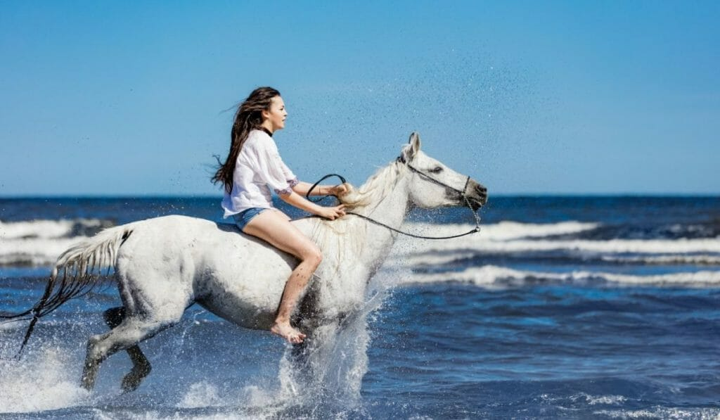 Young Woman on a white horse galloping through the surf on the beach - Horseback riding on the Beach in San Diego