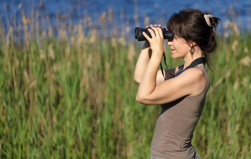 Birding in San Diego in Winter - Woman looking binoculars in front of reed field -