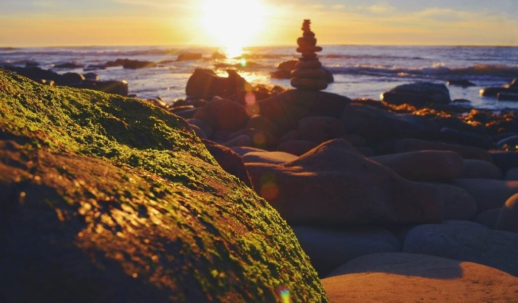 close up of coastal rock formations at Sunset Cliff in San Diego during sunset