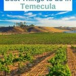 Yes, most people think of wine tasting, but there are so many other fun things to do in Temecula for every taste and budget. From the best Temecula restaurants to speakeasys, breweries, horseback riding and alpaca farms, this town has a lot to offer. Temecula Things to do - Temecula California - Temeculay wineries - Temecula wine tasting - temecula old town - Wine region California - California wine region - wine tasting California - Weekend trips from Los Angeles - Weekend trips from San Diego