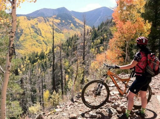 mountain biker on a mountain bike path through a mountainous forest during fall